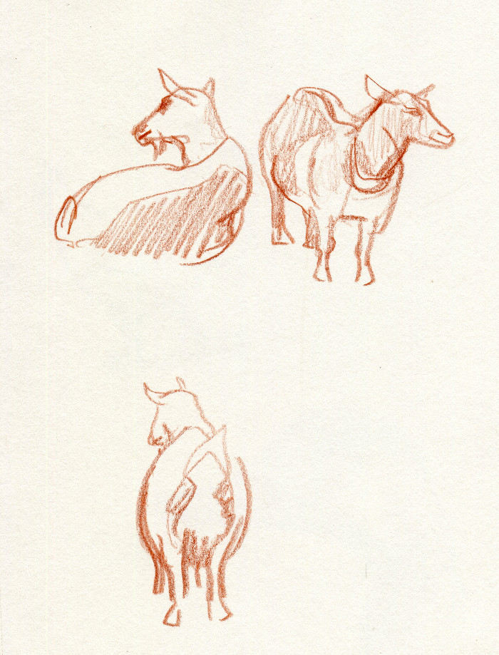 -goat140.jpg