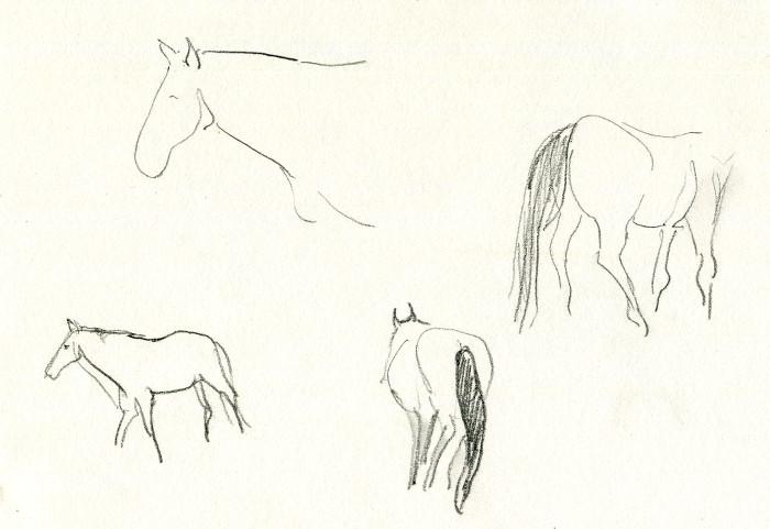 -horse132.jpg