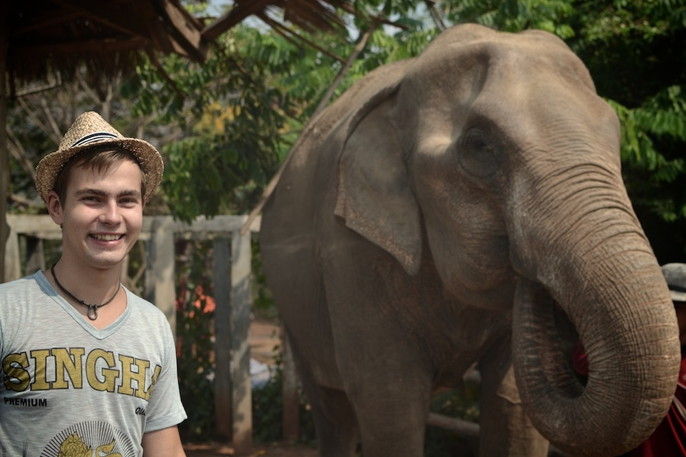 Elephant rescue center, Thailand