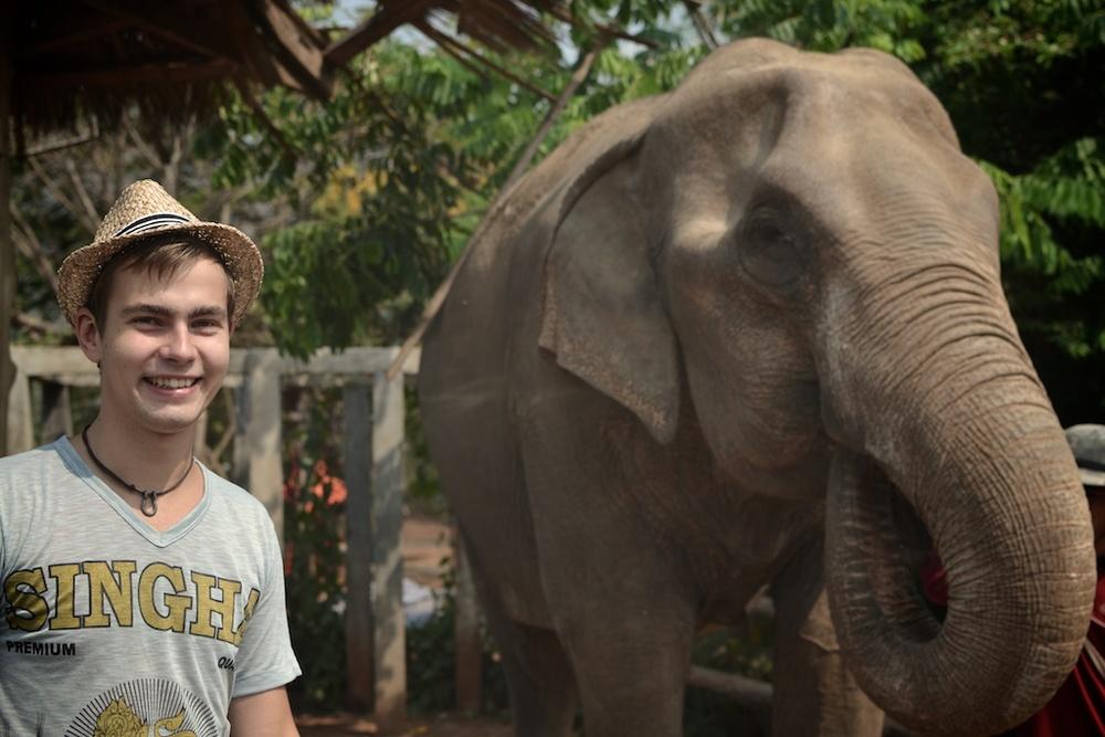 Elephant rescue center, Thailand