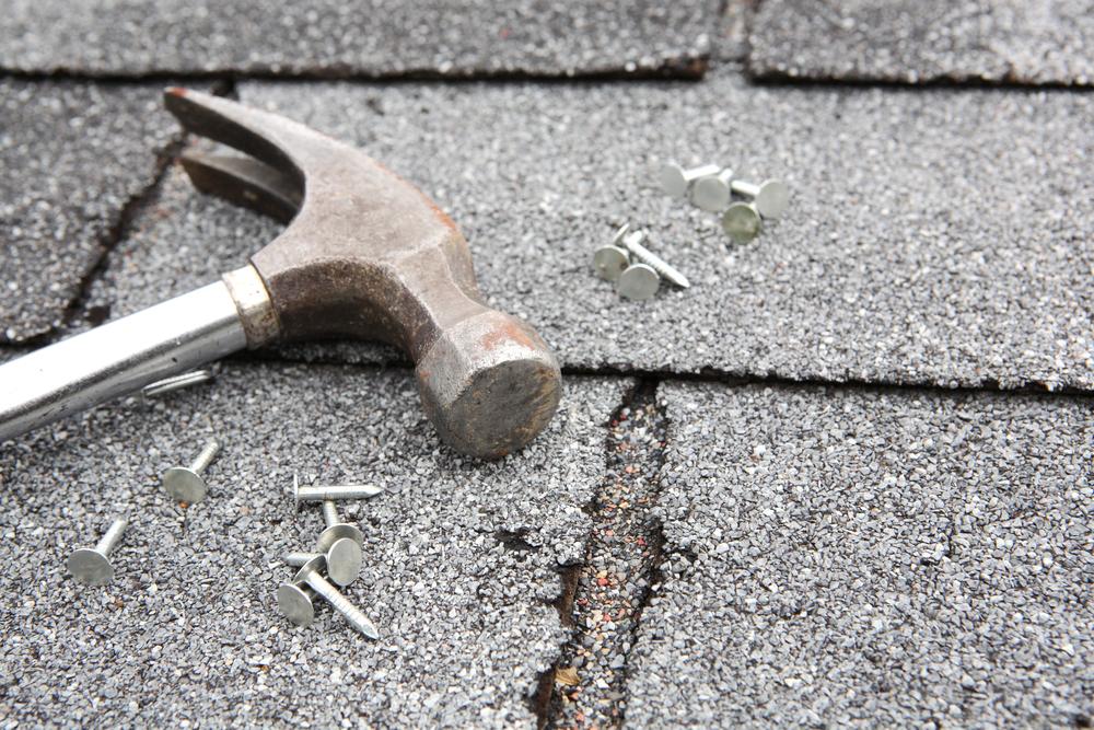 Roof repair decisions