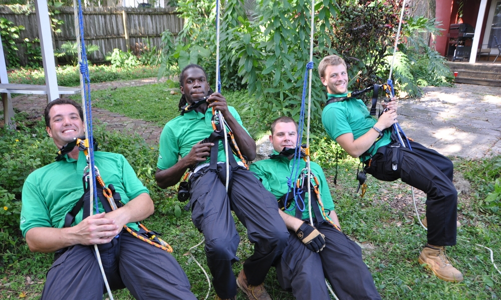 Safety Harness Training