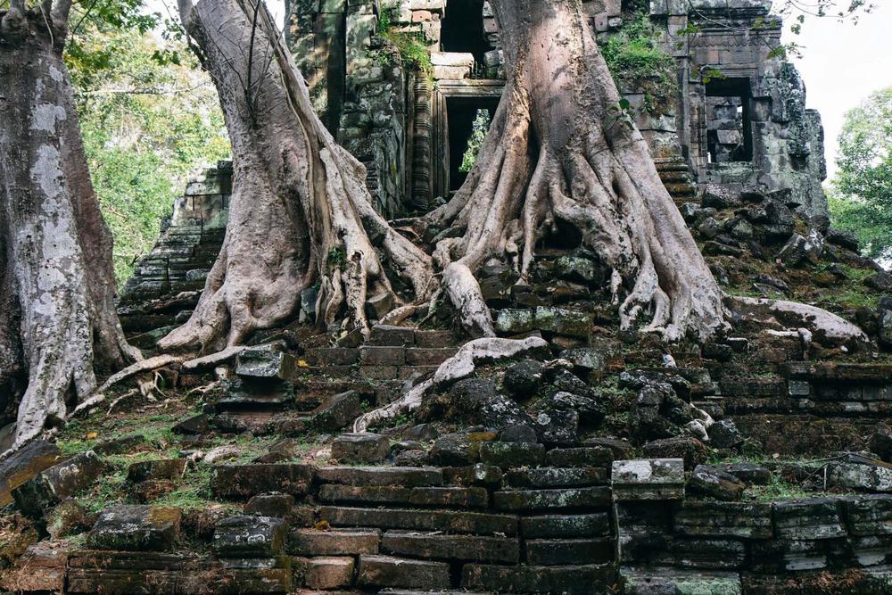 RenPhotography_CambodiaAngkorWat_12.jpg