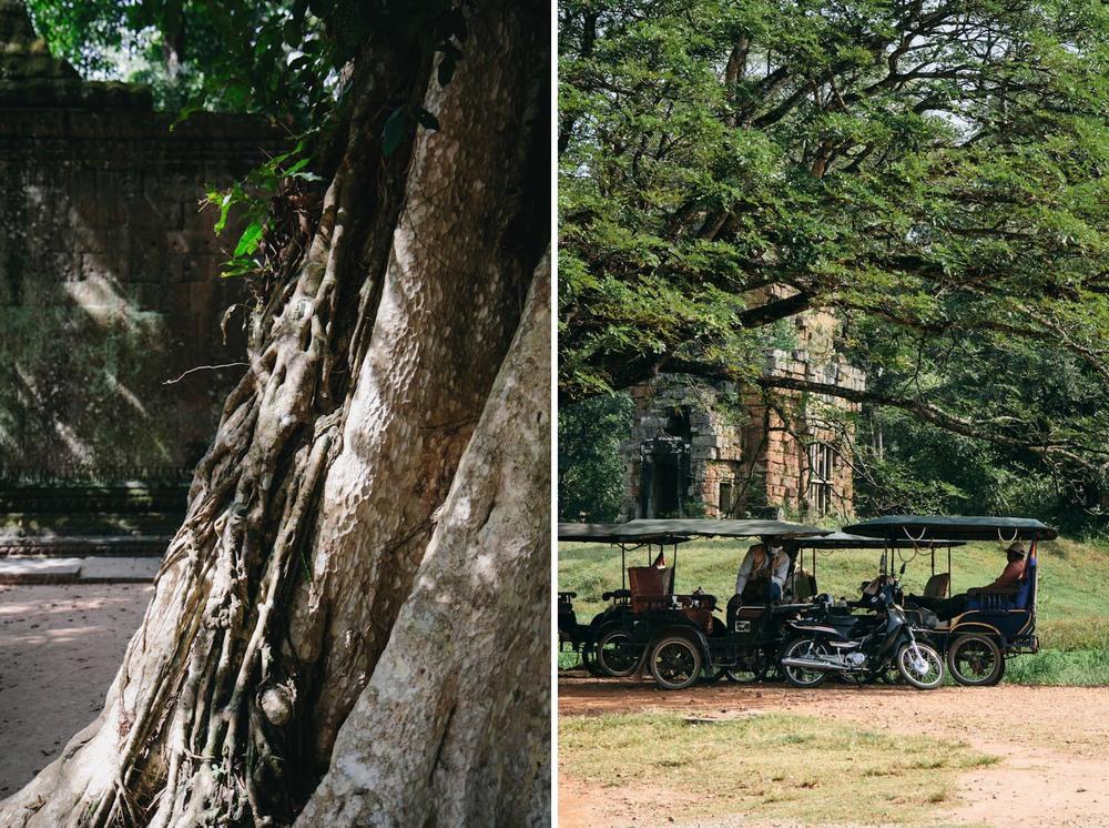 RenPhotography_CambodiaAngkorWat_13.jpg
