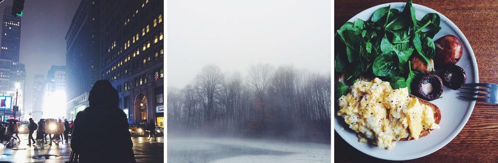 RenPhotography_WinterIphone05.jpg