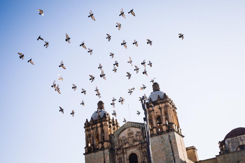 170113_Oaxaca_Street_02.jpg