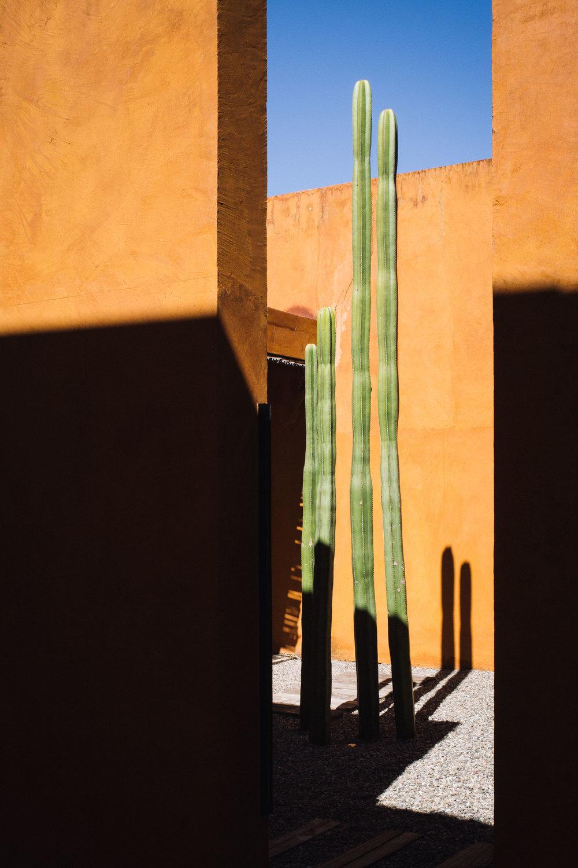 170115_Oaxaca_CosijoHotel_08.jpg
