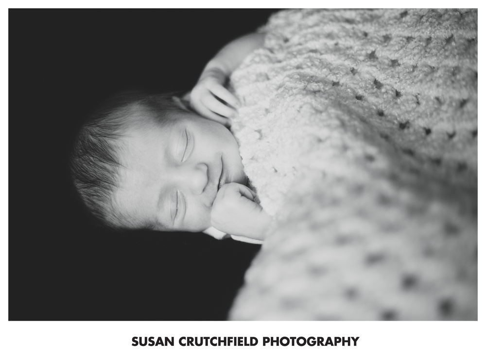 Buford Newborn Photographer