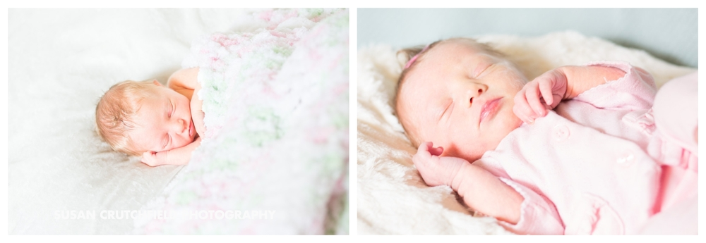 Chattanooga Newborn Photographer