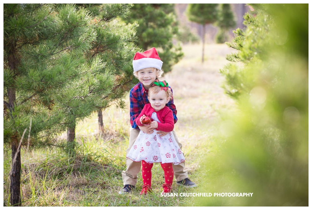 Pine Mountain Children's Photography