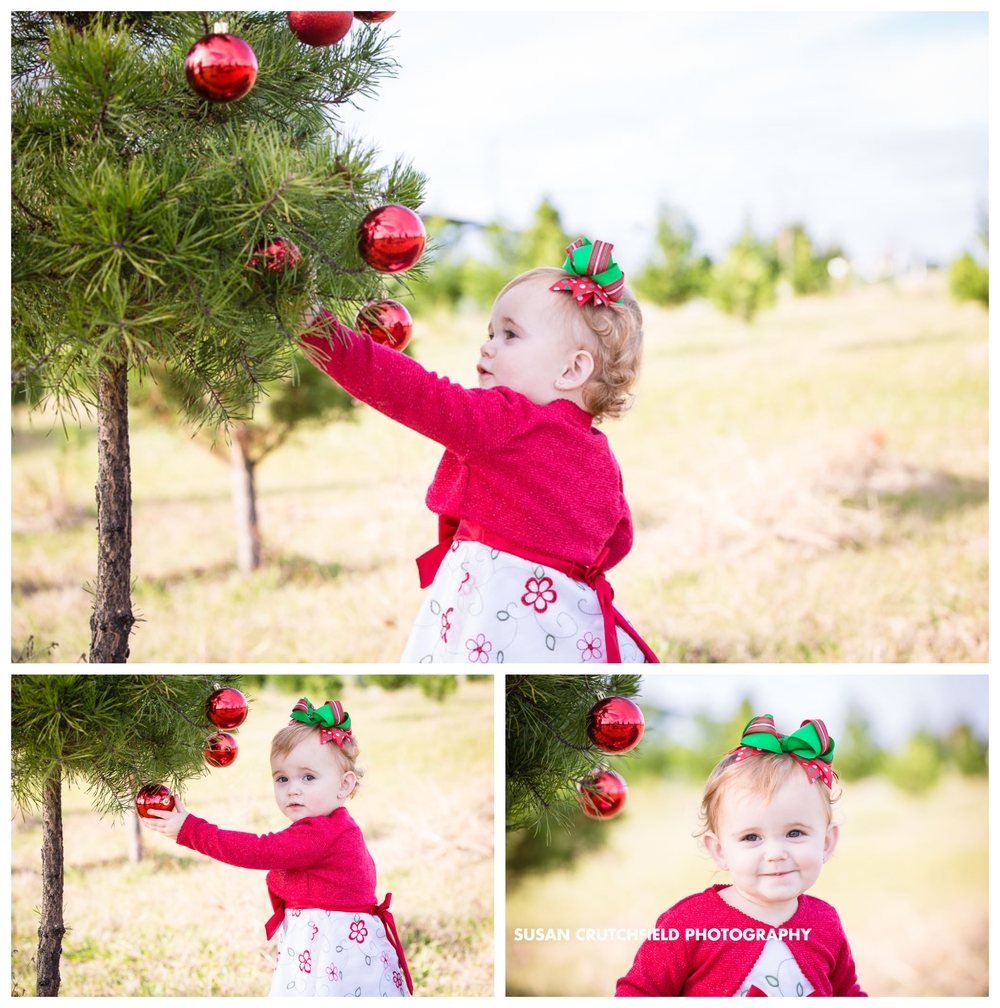 Pine Mountain Kids Photography