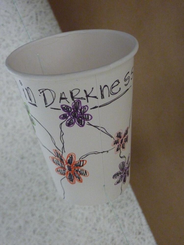 cups_P1030825.jpg