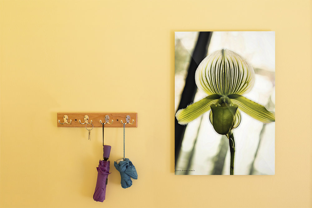 They have plentiful possibilities - for plastering their place.  Posters and prints available!