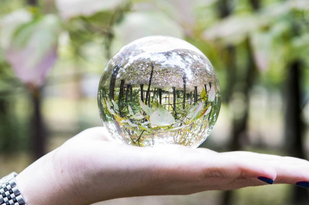 lens ball.jpg