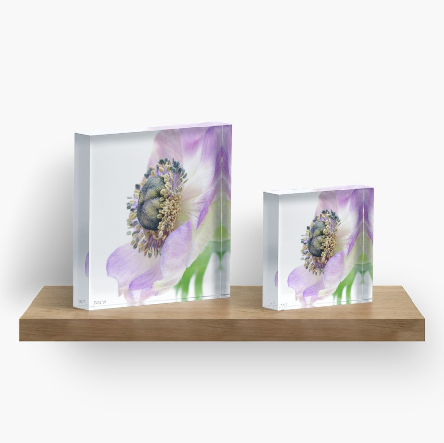 Acrylic blocks - literally stand on their own!