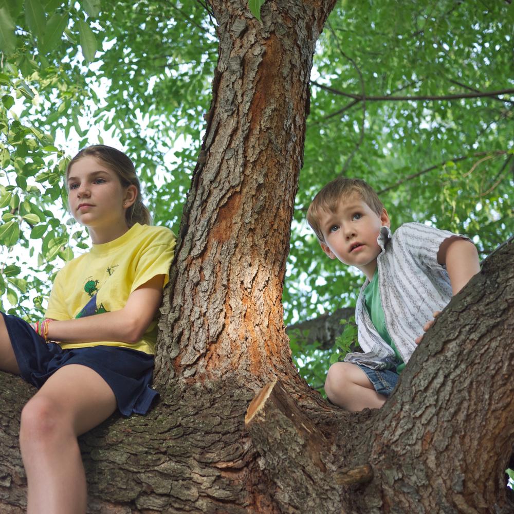DKC13_Kids_030613_14.jpg