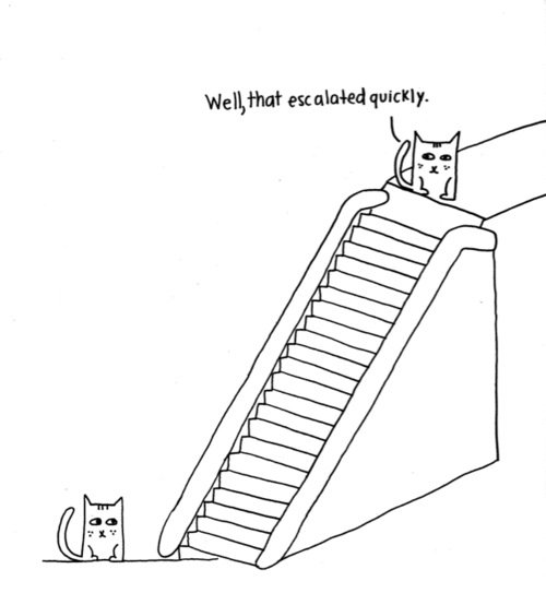 EscalatorCats.png