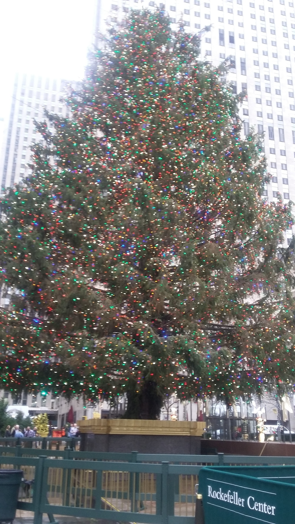The beautiful Christmas tree at Rockefeller Center