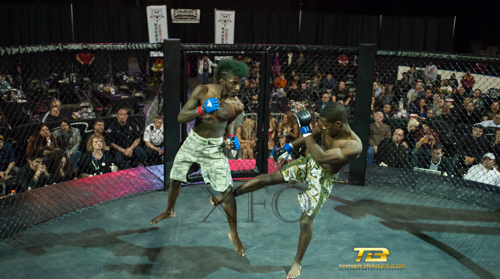 "XFO MMA Presents ""fight Night"" at The Sears Centre Main Event Posting"