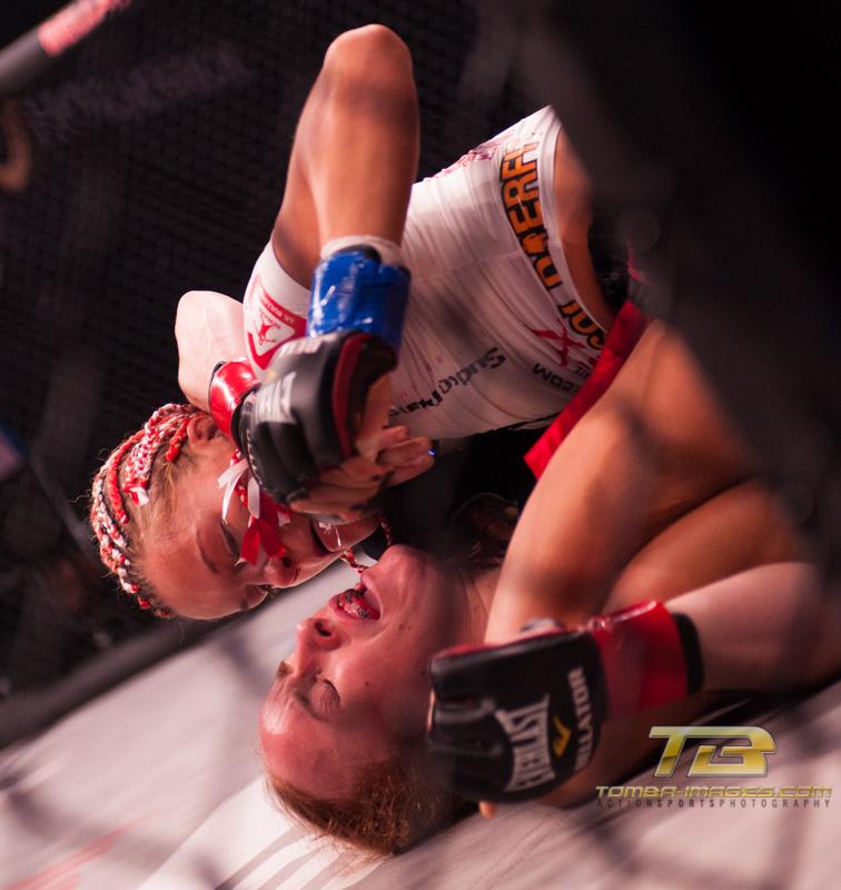 Bellator # 84 Fight Night Gallery Posting (Few Quick Picks)