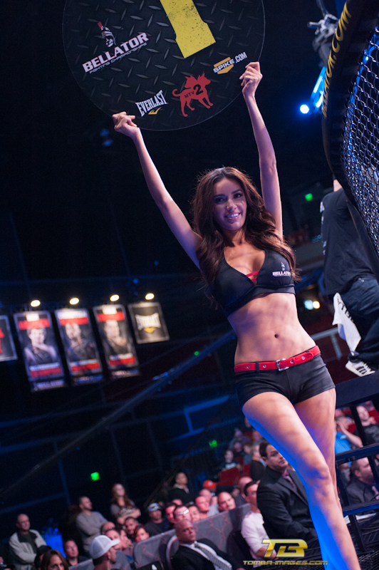 The Ladies of Bellator