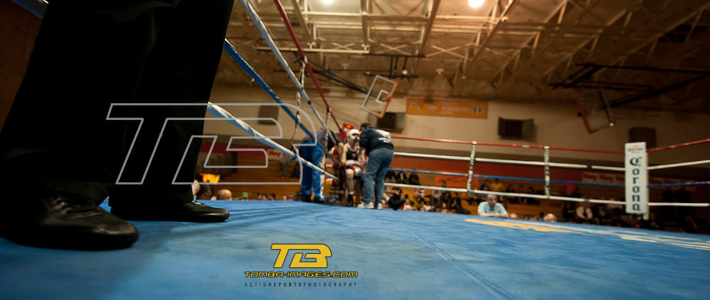 Selection of images from the Friday's March 18th Chicago Golden Gloves