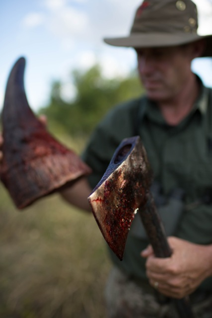 the horrors of the rhino horn trade , with a value a hundred times that of cocaine people will stop at nothing to kill a rhino - THIS HAS TO STOP