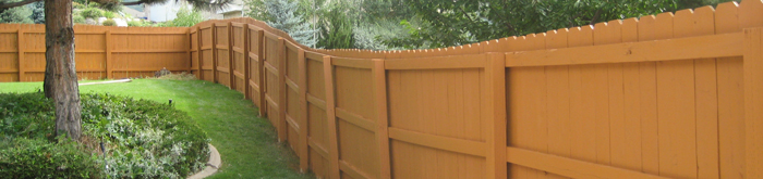 Fence-Painting.jpeg