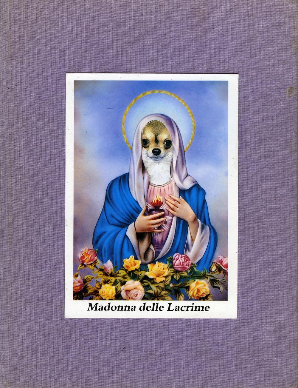 Madonna, 2009.