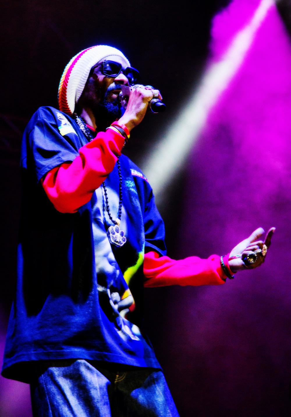 SnoopLion1.jpg