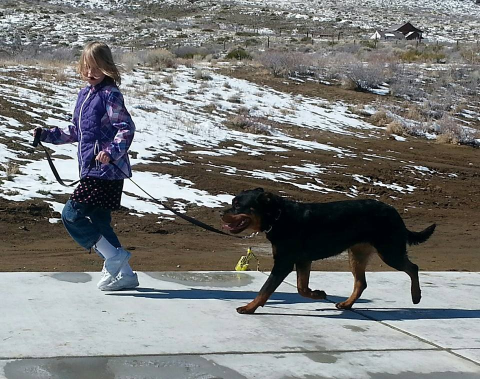 My daughter working with Fiona on the move at 14 months.