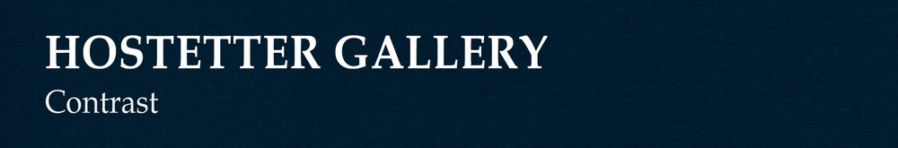 Hostetter Gallery Header.jpg