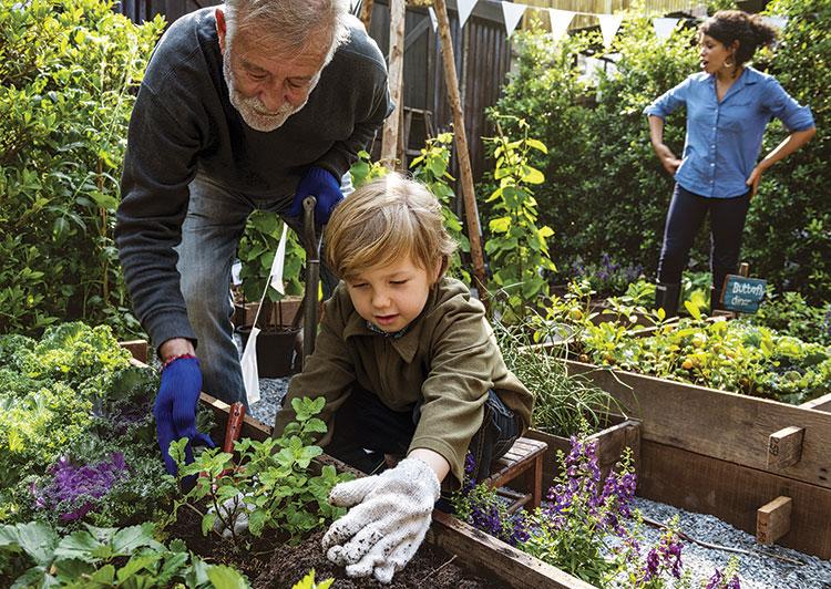 MPC-Gardening_AdobeStock_152224589.jpg