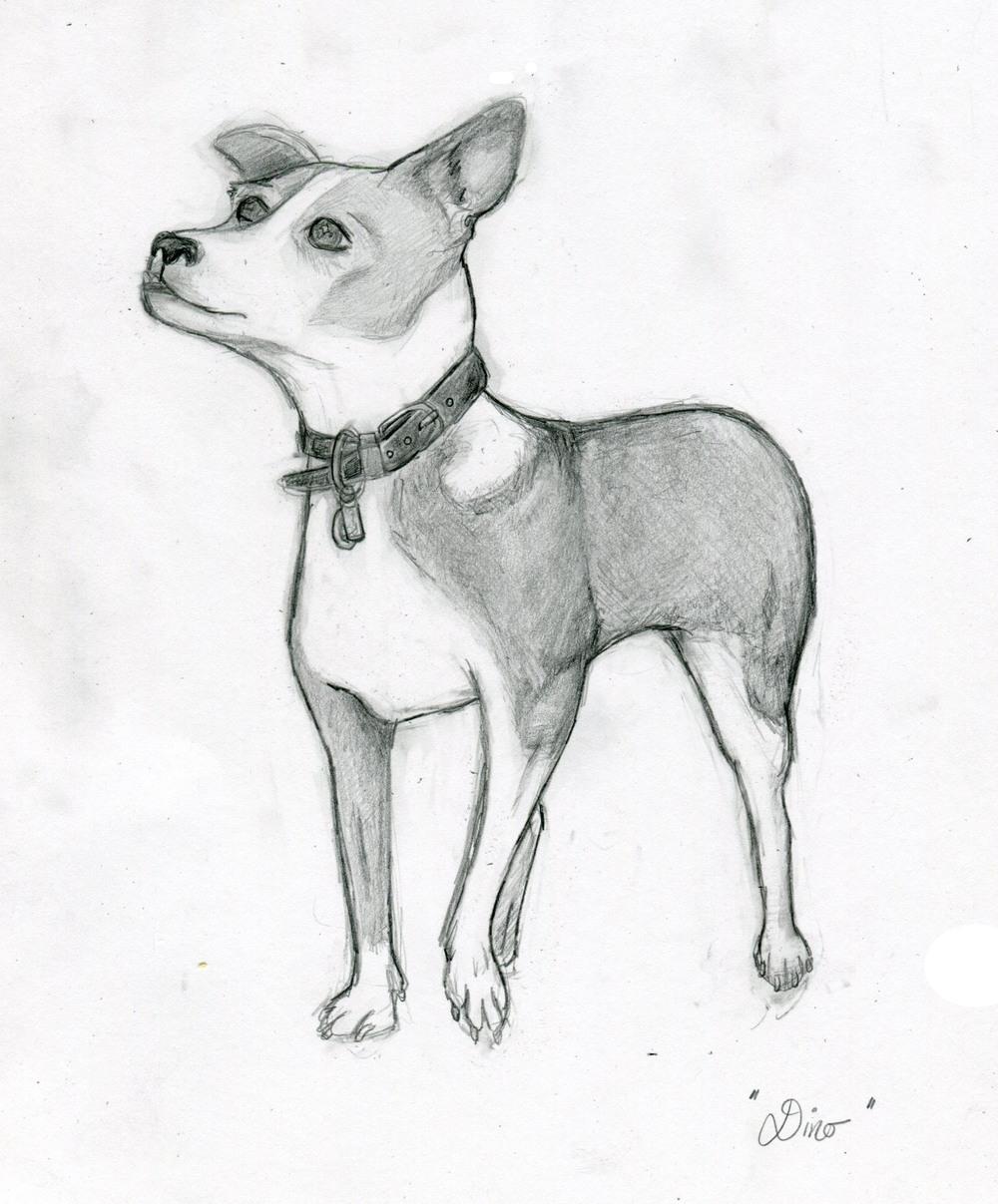 Dino(sketch), 2014 graphite on paper