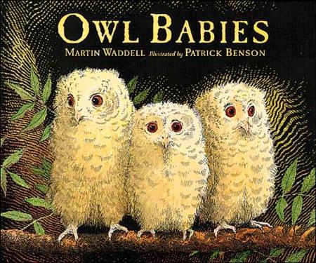 Owl_Babies.jpg
