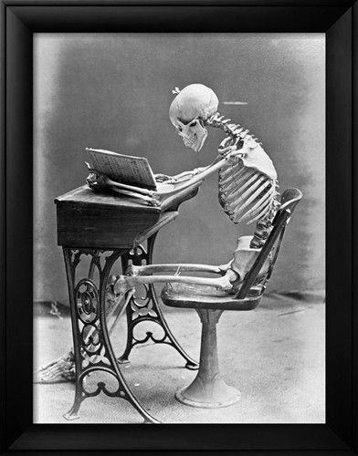 skeleton reading book