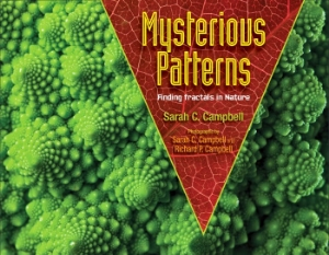 mysterious patterns fractals campbell 2014 new science kids book long enough