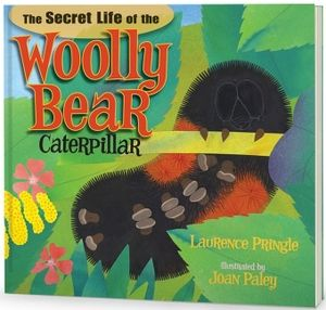 secret life woolly bear caterpillar pringle palsy new science kids book long enough