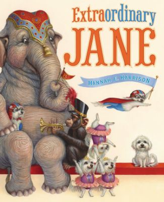 extraordinary jane top ten best 2014 kids picture book long enough