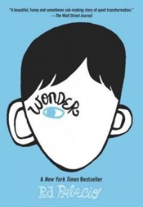 wonder palacio facial disfigurement deformity disability other abled kids chapter book long enough