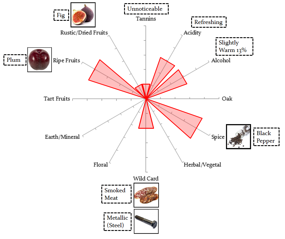 Trader Joes Block Red Shiraz StarMap.png