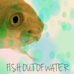 fishoutofwatermadrid