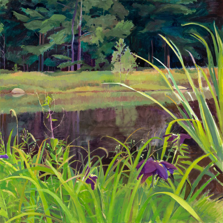 """Iris by the Pond"", 28"" x 28"", oil on linen"