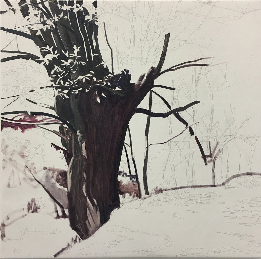 SusanAbbott_painting3.JPG