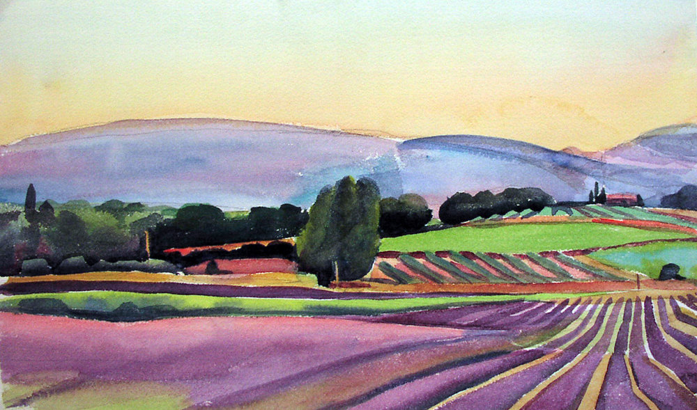 """""""Rows of Lavender, Twilight, Provence"""", watercolor, 10"""" x 16"""", framed in maple 19"""" x 25"""", $350.00. Purchase  here .  SOLD"""