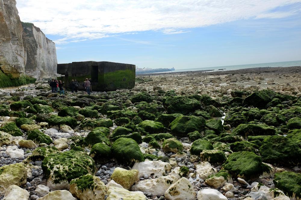 Fallen bunker