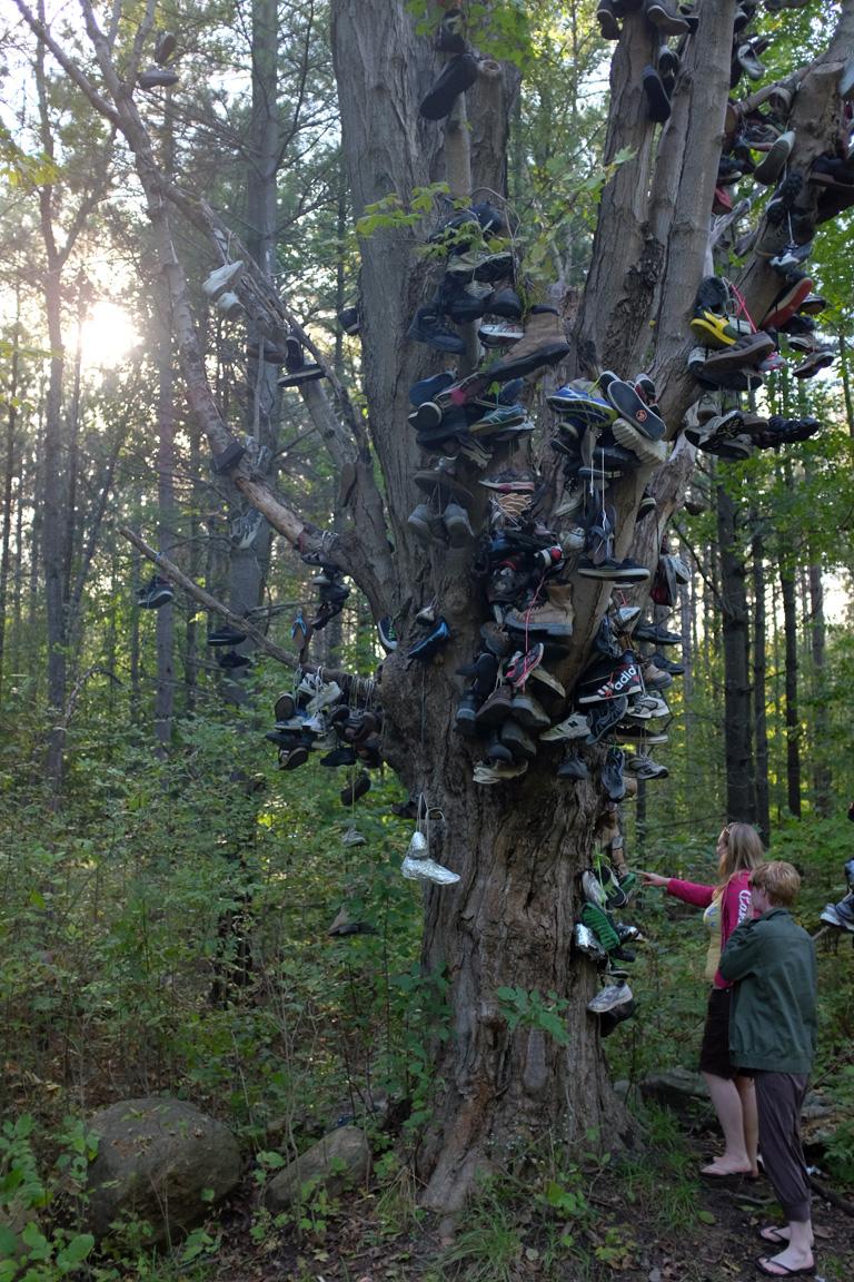 Shoe-Tree-3-100dpi.jpg