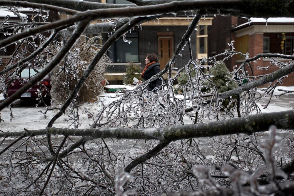 Toronto Ice Storm 2013-100dpi-2.jpg