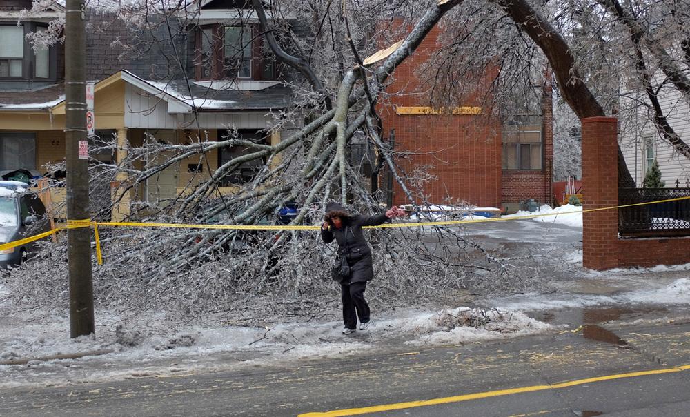 Toronto Ice Storm 2013-100dpi-4.jpg
