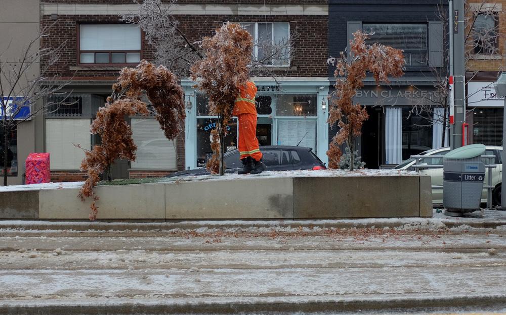Toronto Ice Storm 2013-100dpi-10.jpg